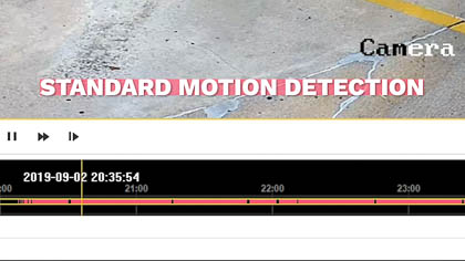 Standard motion detection playback